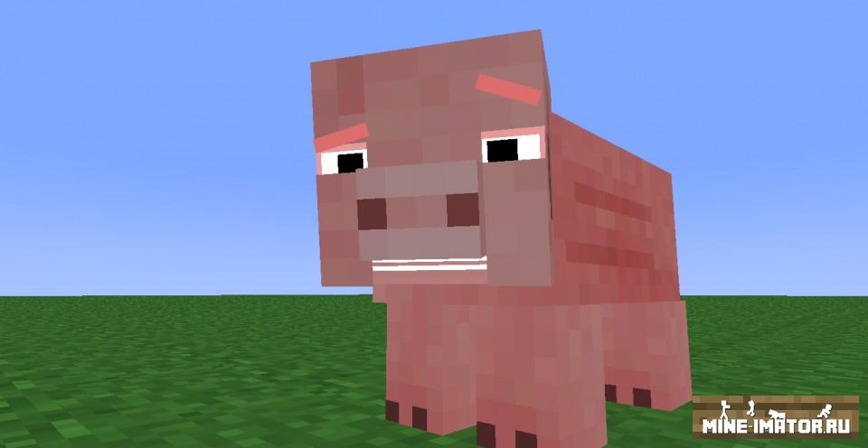 Ригл свинки
