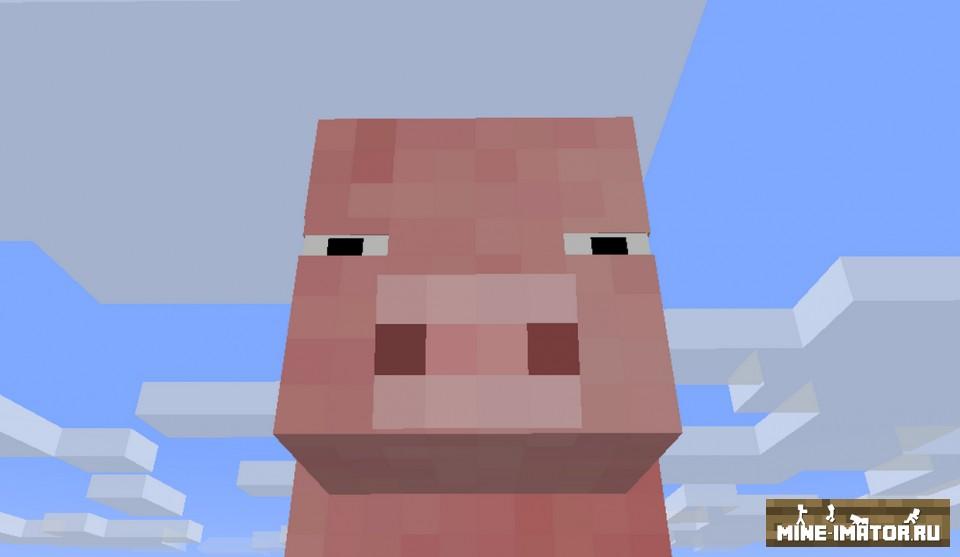 Модель свиньи