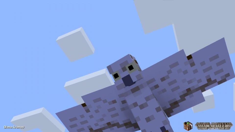 OWL RIG